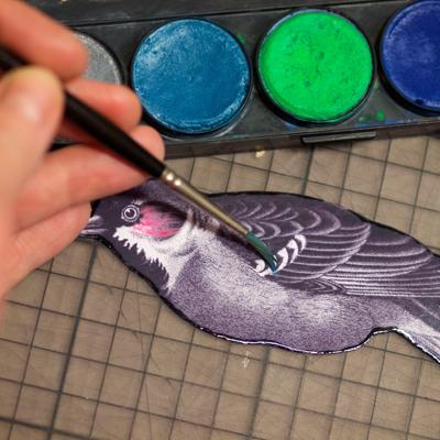 Bird anmalen