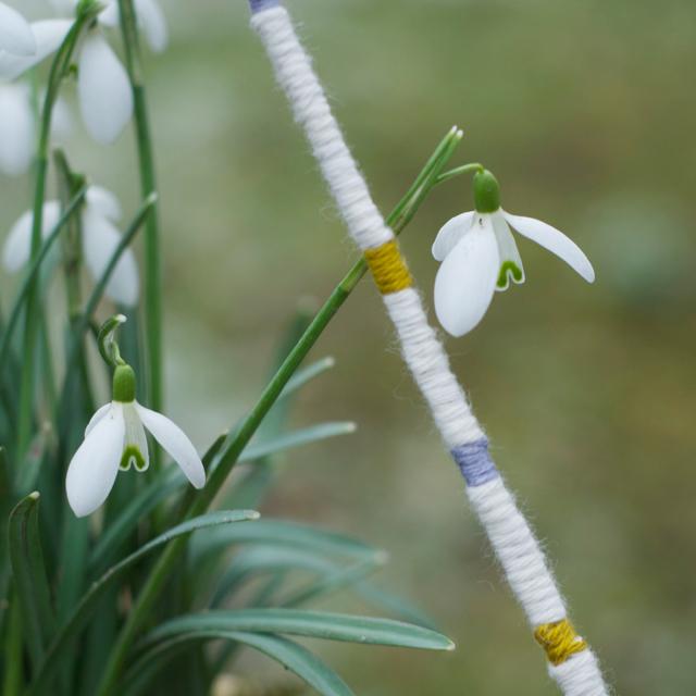Blumenbuegel5
