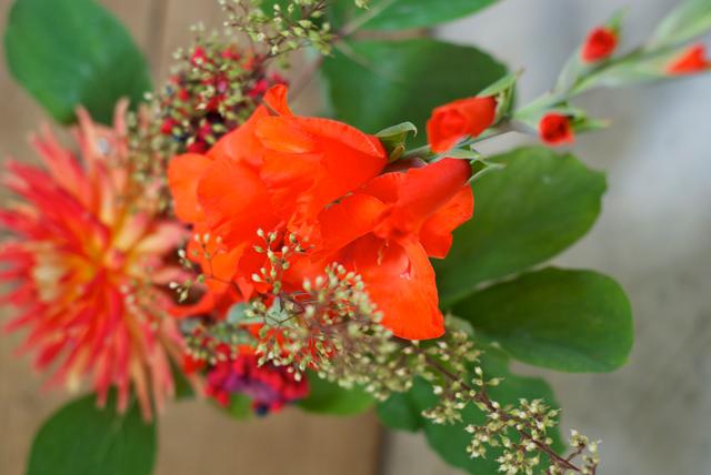Blumenstrauss_close1
