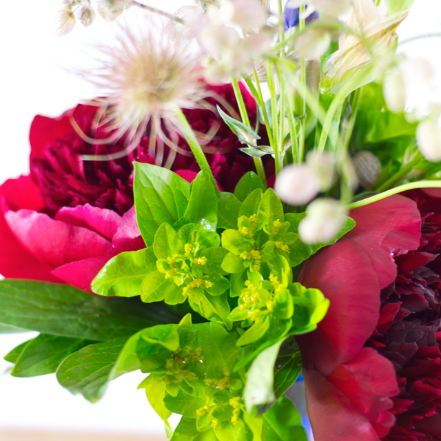 Blumenstrauss_close3