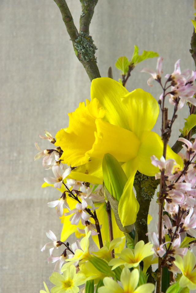 Frühlingsblumenstrauss
