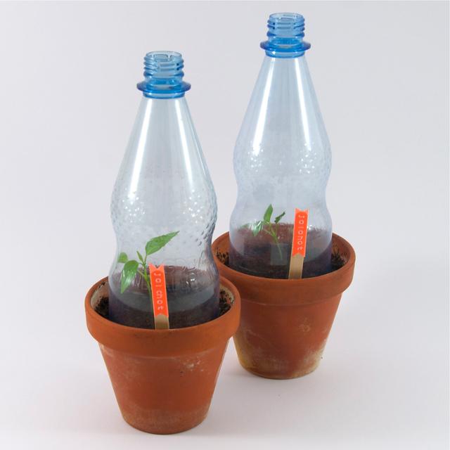 Flaschenhauben