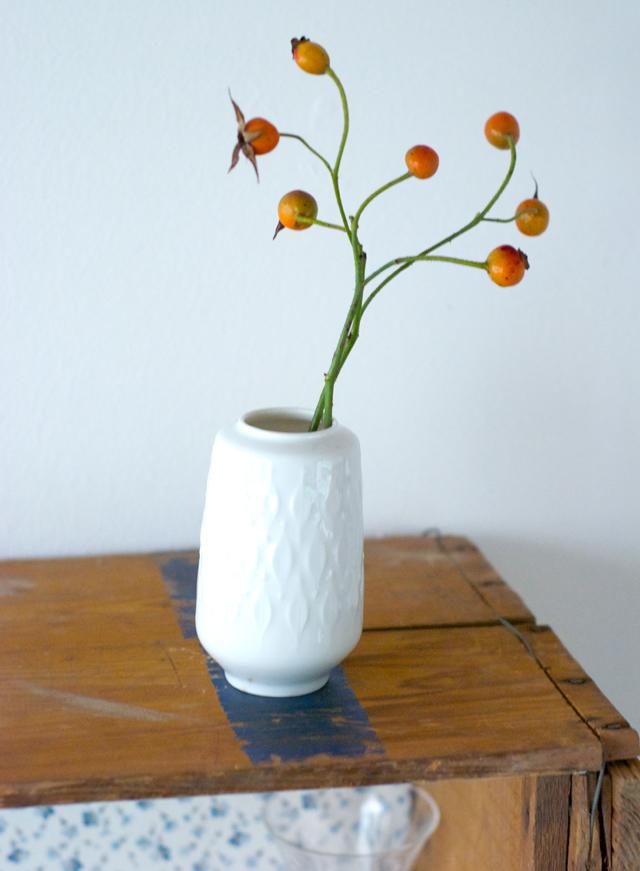 Hagebutten in Vase