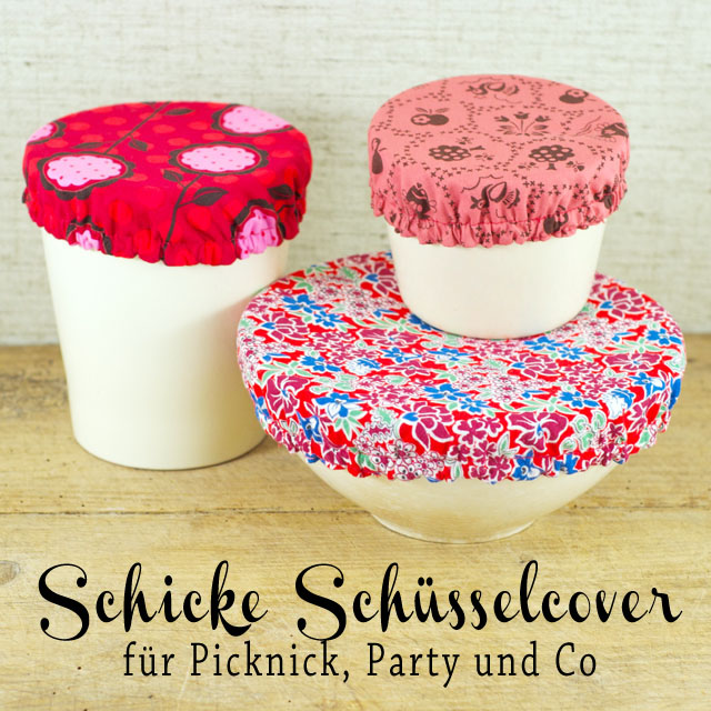 Schuessel_cover_blog
