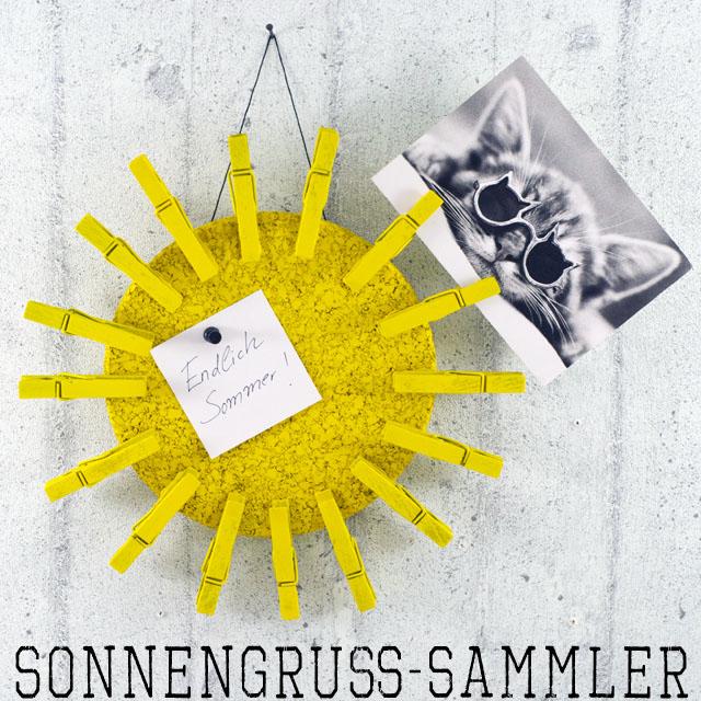 Sonnengrusssammler