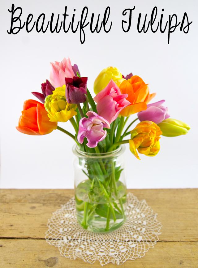 Ein schöner, bunter Tulpenstrauss in einem Weckglas