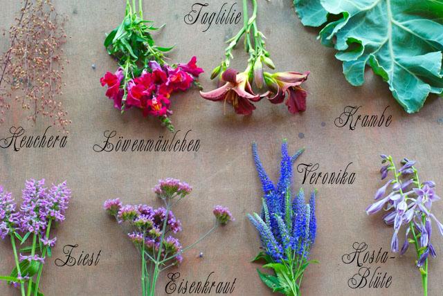 einzelne_Blumen