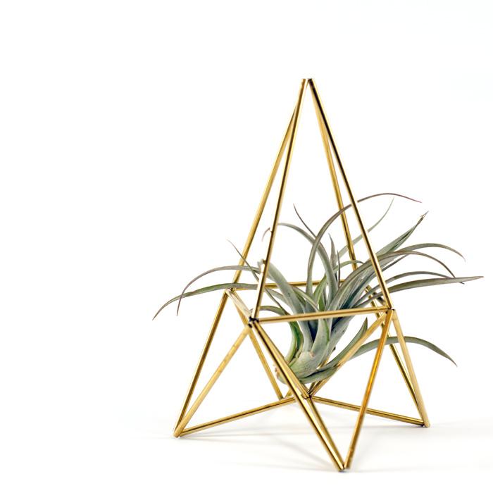 Diesen DIY Luftpflanzen Himmeli Ständer kannst du mit meiner Anleitung ganz einfach aus Messingrohr bauen. Ein Tutorial von johannarundel.de