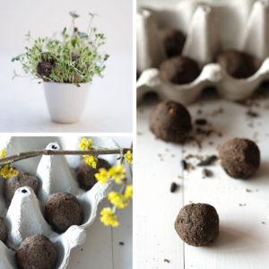 Seedbombs kannst du ganz leicht lebst herstellen. Dafür brauchst du nur ein paar Zutaten und ein bisschen (Warte-)Zeit. Samenbomben sind ein tolles DIY-Geschenk für Naturfreunde, machen unsere Umgebung bunter und Insekten glücklich. Anleitung auf johannarundel.de.