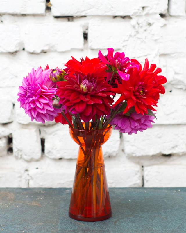 Friday Flowers | Schon wieder Dahlien!